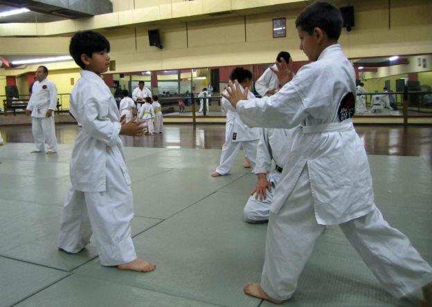 niños aikido 2