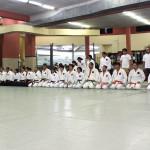 Seminario de Atemi Aikido KeitenKai 2015